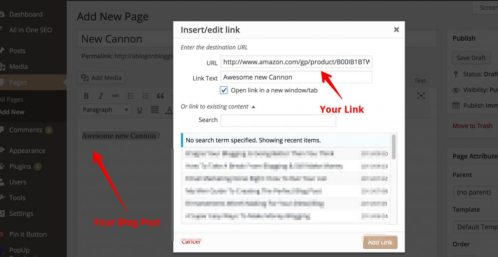 How to place your amazon affiliate link in WordPress