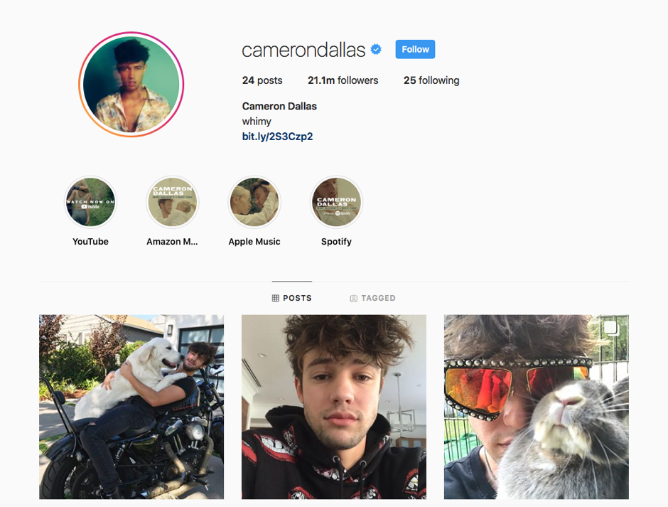 https://www.instagram.com/camerondallas/