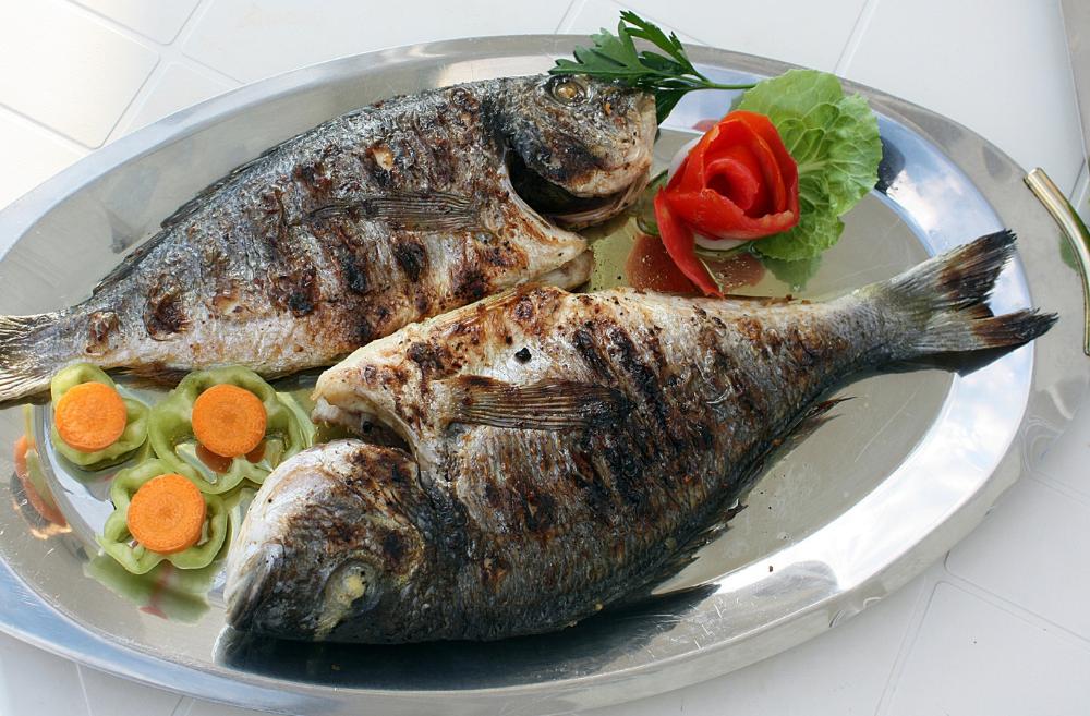 Cook Fish Tasty 101