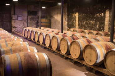 Incredible Home Winer Cellars For The Wine Connoisseur